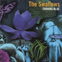 Turning Blue — The Swallows