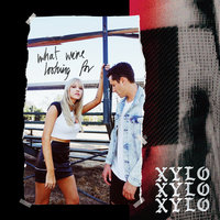 What We're Looking For — XYLØ