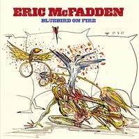 Bluebird On Fire — Eric Mcfadden