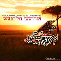 Pattern Safari - Single — Audiomatic, Phaxe & Vaishiyas