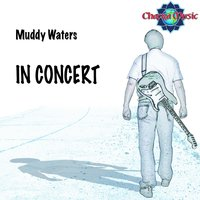 In Concert — Muddy Waters