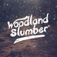 Woodland Slumber — Dreams of Nature