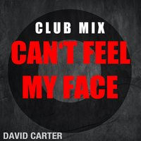Can´t Feel my Face — David Carter
