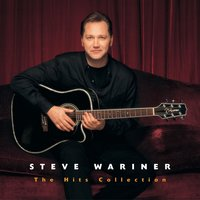 The Hits Collection: Steve Wariner — Steve Wariner