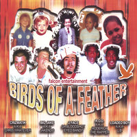 Birds of a Feather — Falcon Entertainment