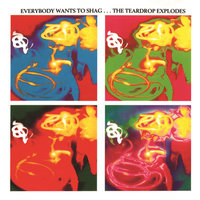 Everybody Wants To Shag... The Teardrop Explodes — The Teardrop Explodes