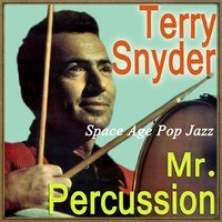 Space Age Pop Jazz, Mr. Percussion — Terry Snyder