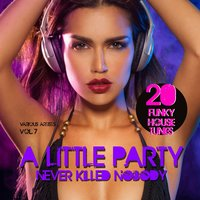 A Little Party Never Killed Nobody, Vol. 7 (20 Funky House Tunes) — сборник
