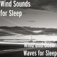Wind and Ocean Waves for Sleep — Wind Sounds for Sleep