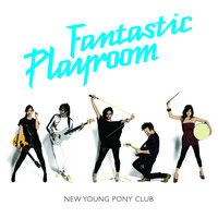 Fantastic Playroom — New Young Pony Club