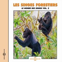 Les singes forestiers - Monkeys of the Forest — Frémeaux Nature