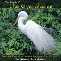 The Sounds of the Everglades — сборник