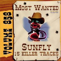 Most Wanted 858 — Sunfly Karaoke