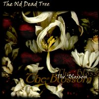 The Blossom — The Old Dead Tree