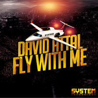 Fly With Me — David Attal