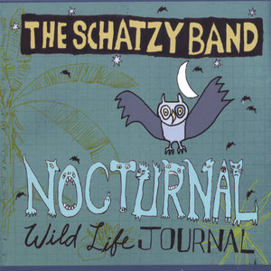 The Schatzy Band - Something Important