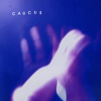 Sky & The Time Axis — Caucus