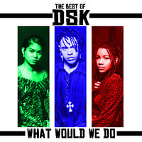 The Best Of - What Would We Do — DSK
