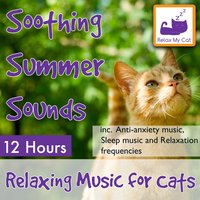 Soothing Summer Sounds: 12 Hour, Relaxing Music for Cats Inc. Anti-Anxiety Music, Sleep Music and Relaxation Frequencies — RelaxMyCat