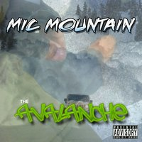 The Avalanche — Mic Mountain