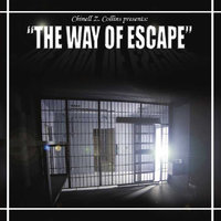 The Way of Escape — Chinell Z. Collins