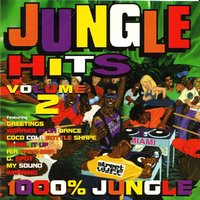 Jungle Hits, Vol. 2 — сборник