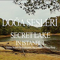 Secret Lake in Istanbul - Nature Sounds for Relaxation, Meditation and Deep Sleep — Doğa Sesleri