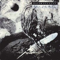 Secrets Of The Beehive — David Sylvian