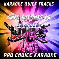 Karaoke Quick Tracks - Sing the Hits of Amy Grant — Vince Gill