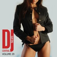 DJ Central - The Hits, Vol. 29 — сборник