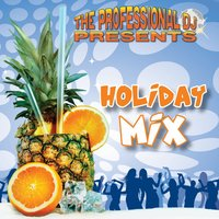 Holiday Mix — The Professional DJ