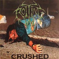Crushed — Rotting