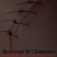 Little Scars and Torn Back Flesh — Reverend H Chronicles