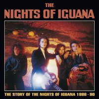 Story Of The Nights Of Iguana — Nights Of Iguana