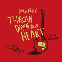 Throw Down Your Heart - Tales From The Acoustic Planet Vol. 3 Africa Sessions — Béla Fleck