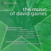 The Music of David Gaines — Moravian Philharmonic & Vit Micka