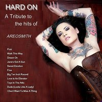 A Tribute To The Hits of Aerosmith — Hard On
