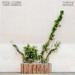 Pool Cosby - Thrive