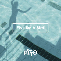Fly Like A Bird — Pitto