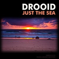 Just the Sea — Drooid
