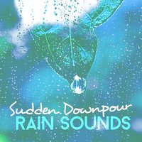 Sudden Downpour: Rain Sounds — Rain Sounds & White Noise