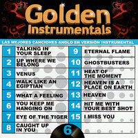 Golden Instrumentals, Vol. 6 — Yoyo International Orchestra