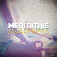 Meditative Awareness — Meditation Awareness