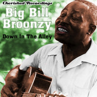 Down In The Alley — Big Bill Broonzy