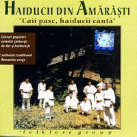Caii Pasc, Haiducii Canta (The Horses Graze, The Outlaws Sing) — Haiducii din Amarasti