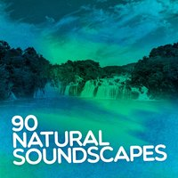 90 Natural Soundscapes: Nature Sounds, Relaxing Spa, Sound Therapy, Sleep Aid, Soothing — сборник