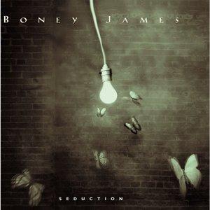 Boney James - Camouflage
