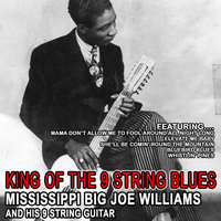 King Of The 9 String Blues — Big Joe Williams and His 9 String Gutar