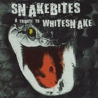 Snakebites: A Tribute to Whitesnake — сборник