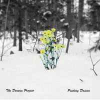 Pushing Daisies — The Darwin Project